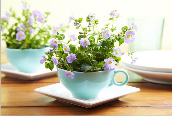 7-easy-ways-to-repurpose-teacups-1-size-3