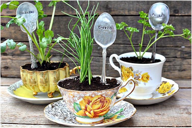 herb-planters