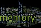 Difference Between Memory and Register