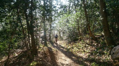 Dreamy, rocky, technical trails, winding through the trees
