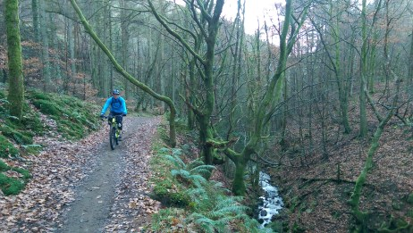 The first climb of the day from the car park at Cwmcarn