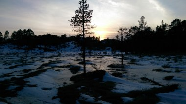 sunset in bymarka and frozen lake near trondheim