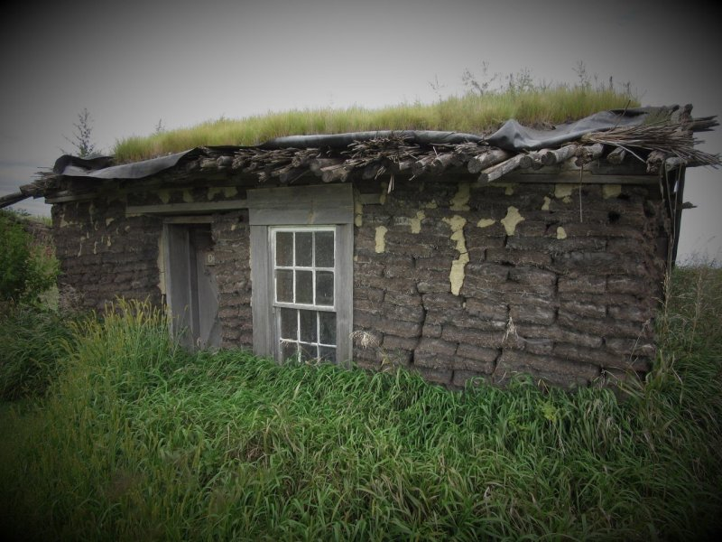 Poor man's Sod House on the Praire, MN