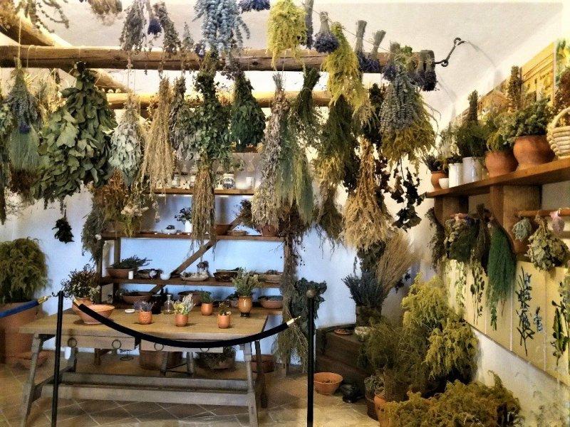 Herb room at Diósgyőr castle