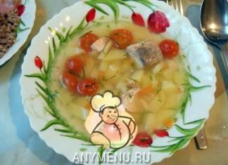 uha-iz-semgi-s-pomidorami