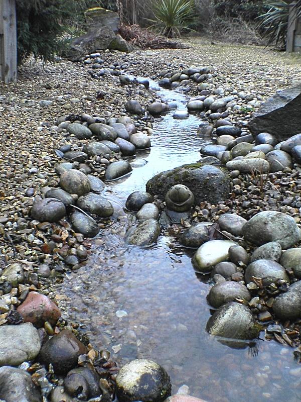 Natural Koi Pond Design