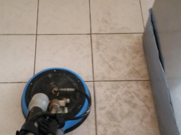 tile and grout cleaning services lutz