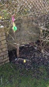 Eggs hidden beneath decorations