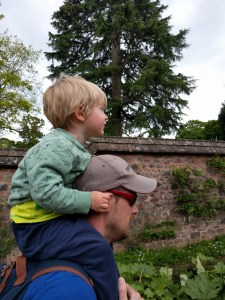 Exploring the walled gardens