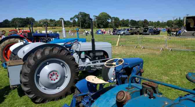 Our Day at The Wayland Show 2016