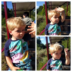 Waving Train Bressingham
