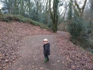 Exploring Bluestone