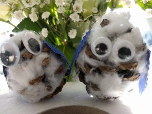 Pinecone Owl Chicks