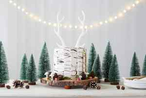 12 Makes of Christmas