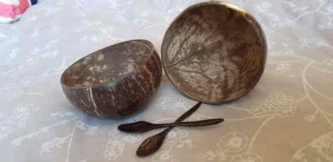 Vie Coconut Bowls