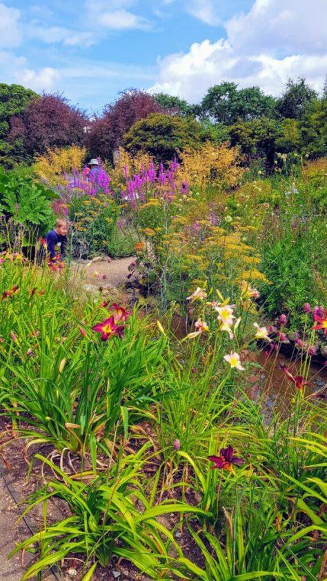 Gardens at Pensthorpe