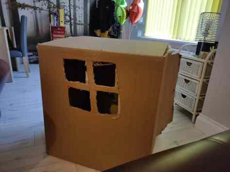 Huge box house