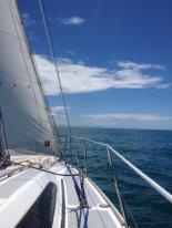 Sailing in Cook Strait
