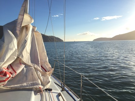 Motoring up the harbour