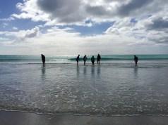 Looking for Tuatua, Ocean Mail Beach, Chatham Island