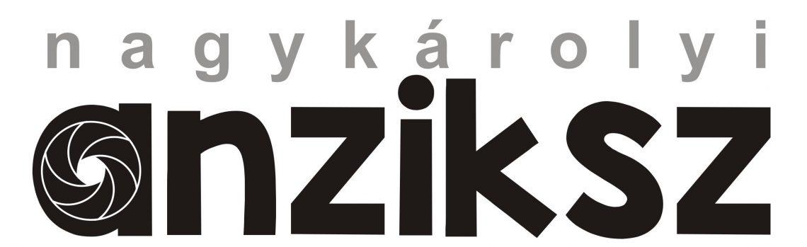 Nagykárolyi Anziksz logó