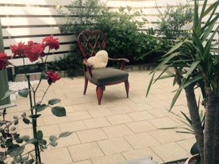 中庭に新しいバラをチョイスしました。