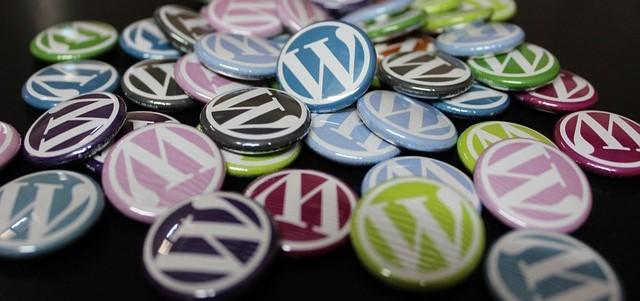 Why to Use Premium WordPress Themes?
