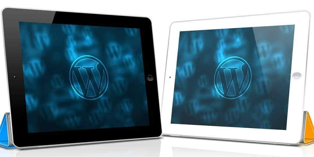 Some of The Most Commonly Used WordPress Plugins You May Need Right After a Fresh WordPress Installation