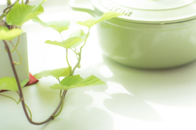 鍋とイモの葉