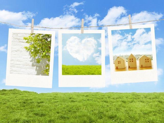 草原の上に三枚の写真