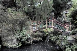 Chinese Bridge at Biddulph Grange Gardens