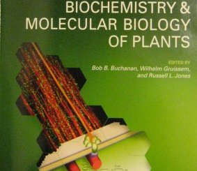 ed-Biochem&MolBiolofPlants-Cover