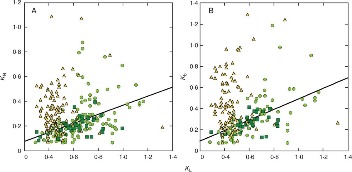 A meta-analysis of leaf nitrogen distribution within plant canopies