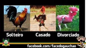 SOLTEIRO, CASADO, DIVORCIADO