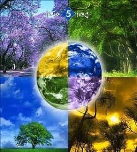 dia mundial meio ambiente