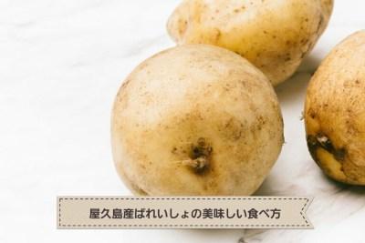 屋久島の3月 屋久島産ばれいしょを使って作ってみたよ!~塩麹肉じゃが~