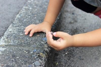 子供は、なぜダンゴムシを集めるのか?