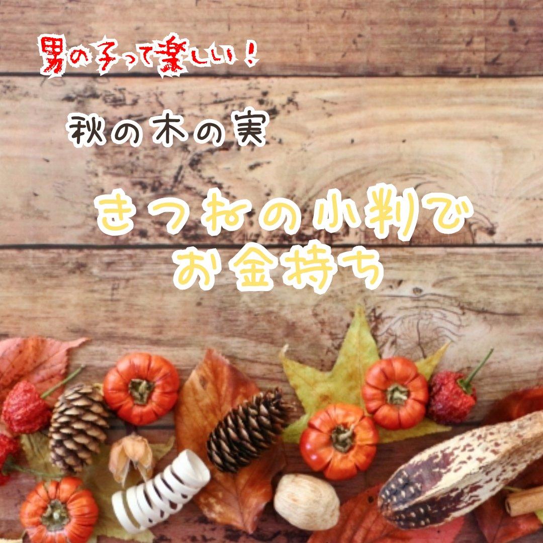 秋の木の実 きつねの小判の正体!