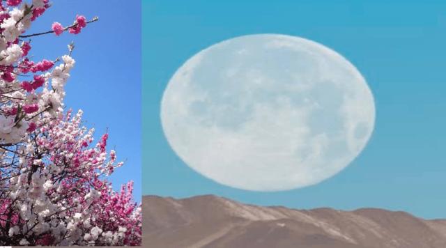 5月7日の満月のフラワームーンが見れる時間と名前の由来と蠍座満月のスピリチュアルな意味は?天気はどうなってる?