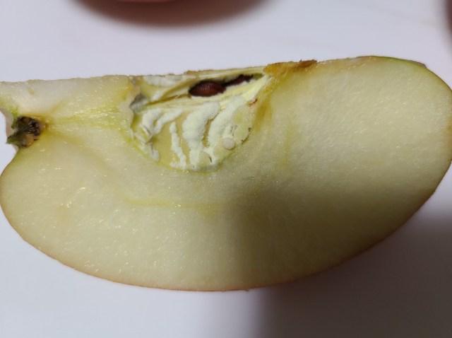 りんごの芯に白いカビ2
