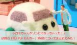 シロモちゃんがゾンビになっちゃった!?話題の「PUI PUI モルカー」第6話についてまとめてみた!