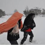 青森 地吹雪体験ツアー 雪国ならではの自然現象を体感!地吹雪の雪原を歩こう
