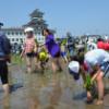 青森田舎館村の田んぼ田植え探検ツアーに1300人体験 参加!
