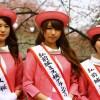 第33回弘前城ミス桜コンテスト2017 :一次審査で15名が決勝審査へ!