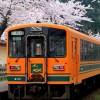 桜の花見に使う額「全国一は青森県」で理由はカニにありそうだ!