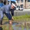 吉幾三さん、青森・西目屋で「幾三米」手植えを行った。(6月6日)
