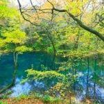 2017 白神山地「十二湖」の紅葉!Now!