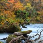 奥入瀬渓流エコロードフェスタ2018開催!@2018年10月27日~28日