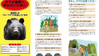 山菜時期はクマ活動期、入山注意を/青森県がマニュアル作成!