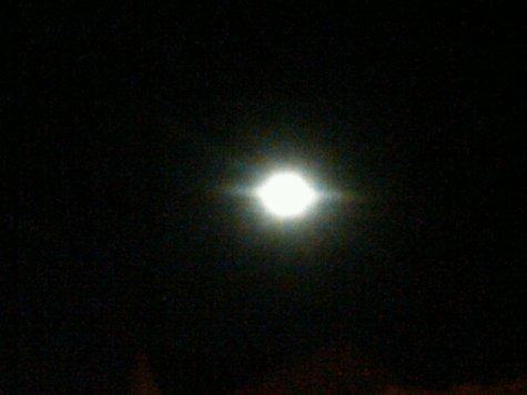 A Savage Moon